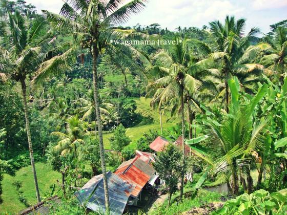 Gunung Kawi、Ubud, Bali